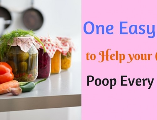 One Easy Tip to Help your Kid Poop Every Day