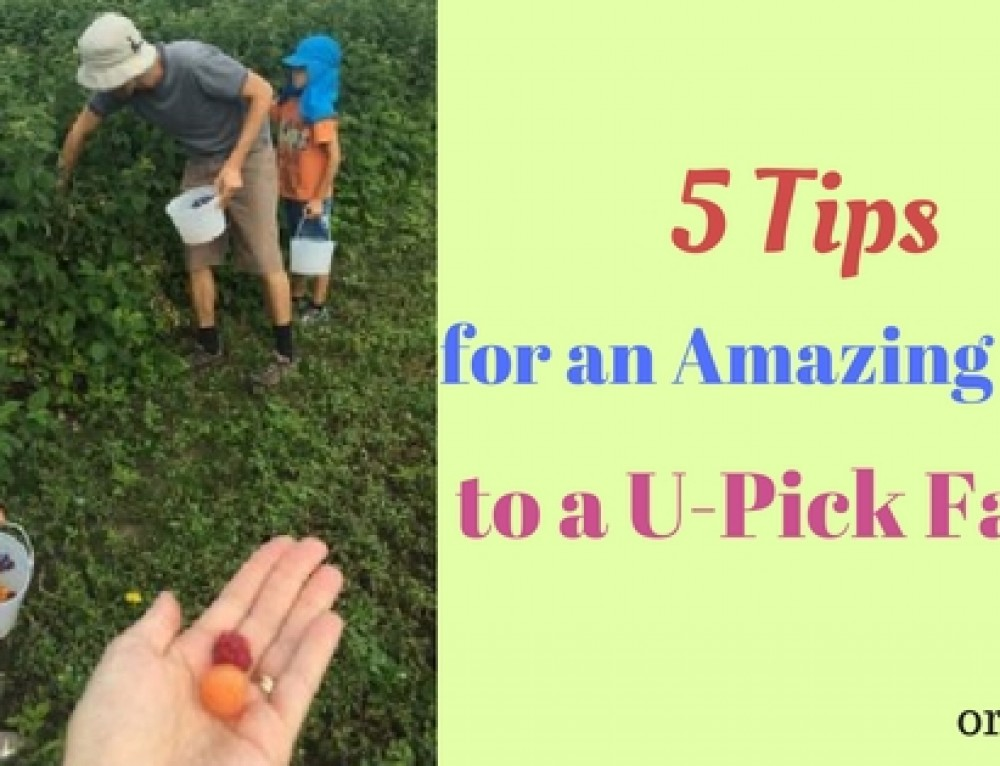 5 Tips for an Amazing Trip to a U-Pick Farm